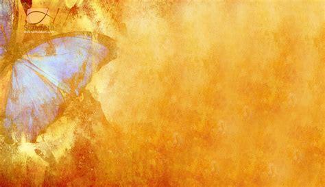 butterfly myspace background