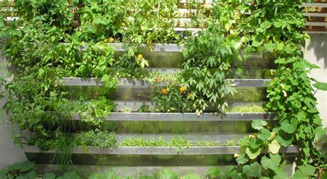 vertical vegetable garden vertical vegetable garden rises in style gardens