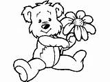 Teddy Bear Coloring Pages Printable Flower Bears Colouring Sheets Holding Cartoon Technosamrat Kindergarten Printables Spring Children Worksheets sketch template