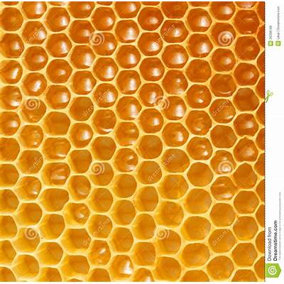 Honeycomb background stock photo. Image of lifestyle