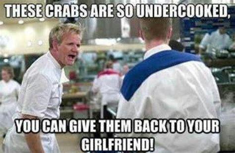 Gordon Ramsay Meme Generator - 35 best gordon ramsay memes images on pinterest