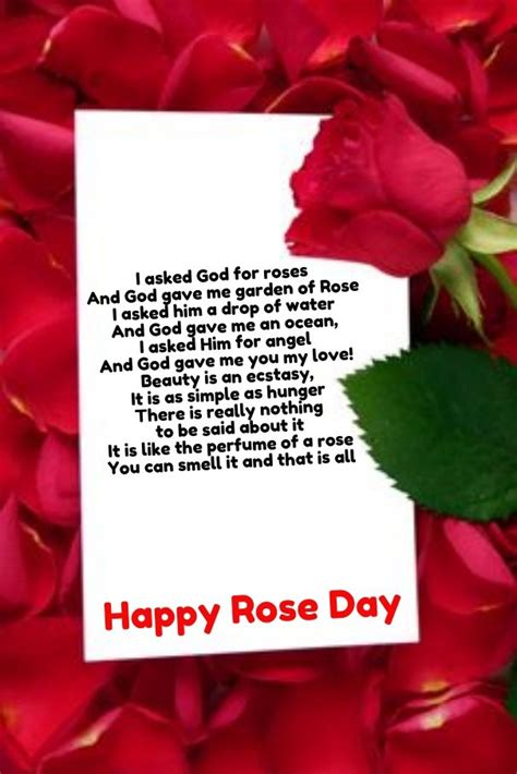 images  happy rose day pictures quotes