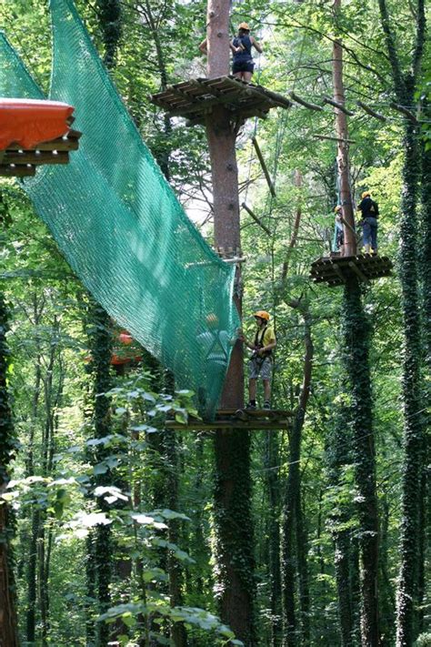 staufen kletterwald staufen muenstertal staufen