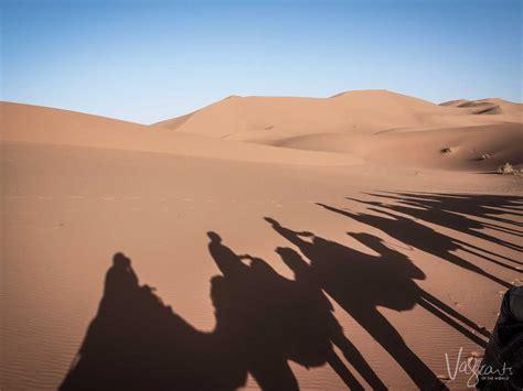 Camel Trekking In Morocco Experience A Sahara Desert Tour