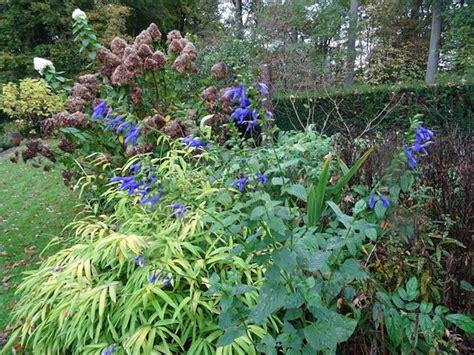 wiersse tuinen de tuinen van de wiersse vorden holland anmeldelser