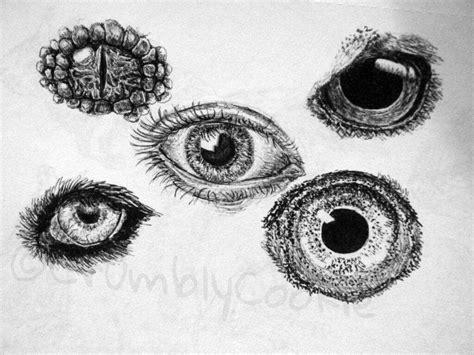 animal eye drawings art amino