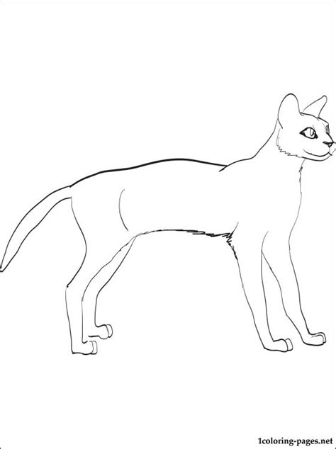 savannah cat coloring page coloring pages