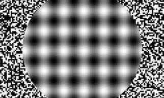 Moving Optical Illusions Black and White