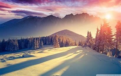 Wonderland Winter Ideal