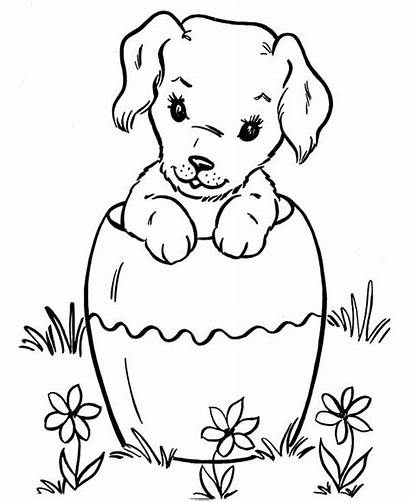 Coloring Dog Pages Funny Easter Pet Bucket