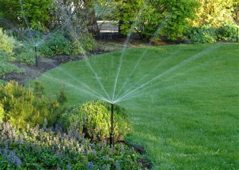 A Guide To Garden Watering Systems Hgtv