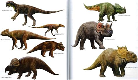 Main Dinosaurs Variety 4243611 1858x1080 All For Desktop