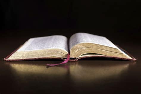 The Surprise Sayings of Jesus Christ: Did Jesus Declare