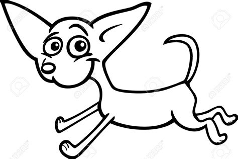 chihuahua dog coloring pages   print
