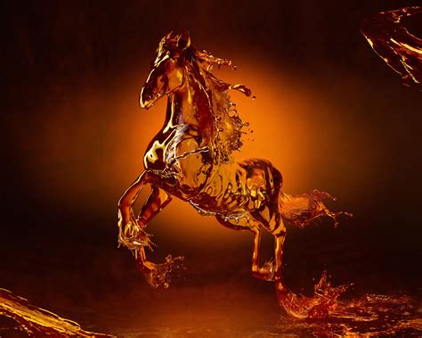 New Horses Wallpapers  Entertainment Only