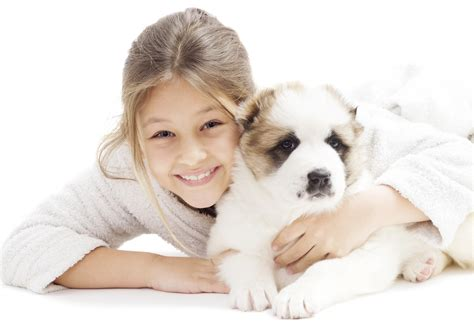 Smiling girl with alabai puppy on white background ...
