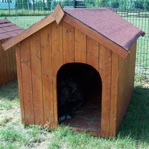 niche 224 chien en bois avec toit bitum 233 et plancher capu
