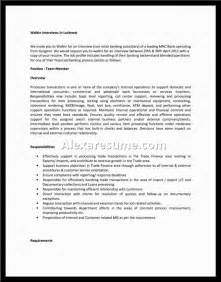 Professional Profile Resume Exles by Profile Resume Professional Exles Accounting Best