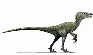 Dromaeosaurus | Jurassic Fight Club | FANDOM powered by Wikia