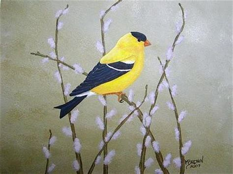 the 133 best images about birds goldfinches on pinterest