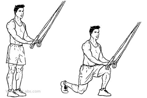 trx reverse lunges lunges workoutlabs