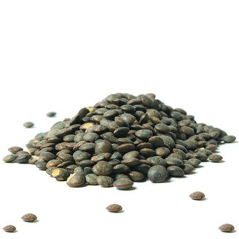 cuisiner des lentilles vertes la lentille présentation production consommation