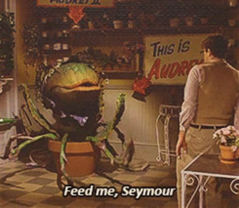 Feed Me Seymour Meme - feed me seymour tumblr