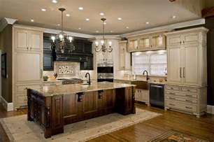 kitchen renovation ideas beautiful kitchen renovation ideas and inspirations traba homes