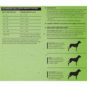 Purina Puppy Chow Large Breed Feeding Chart Purina Puppy Chow Nutrition Information Besto Blog