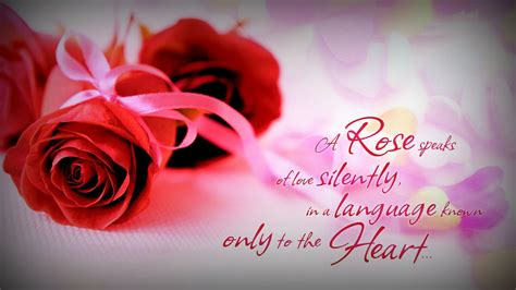 rose speaks relationships love quotes wallpaper