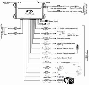 Avital 4103 Remote Starter Wiring Diagram Picture
