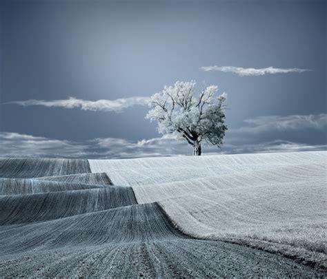 Surreal Fine Art Conceptual Photography Arts