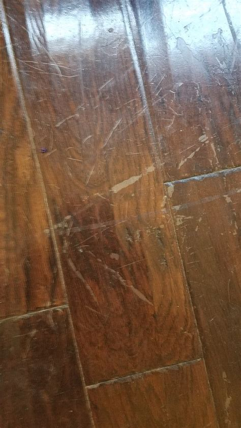 remove wax buildup from wood floors removing wax buildup from hardwood floors thefloors co
