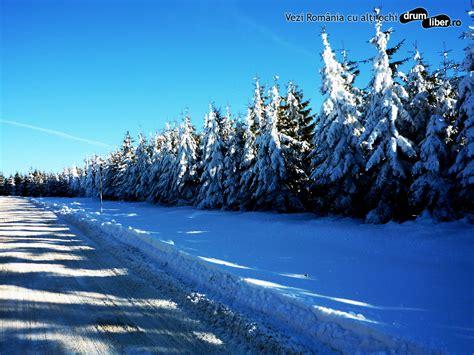 iarna     wallpaper uri de downloadat