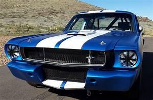 1965 Ford Mustang Fastback B Vintage Race car | VINTAGE RACE CAR SALES