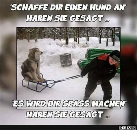 lustige winter bilder 174 best lustige bilder images on pics photos and sayings