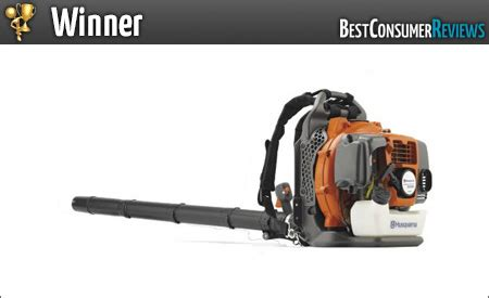 2018 Best Leaf Blower Reviews  Top Rated Leaf Blowers