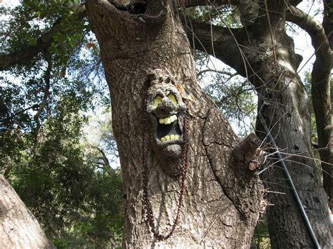 tree faces talking trees