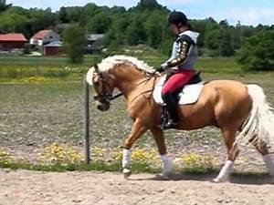 D-ponny Till Salu  S U00c5ld