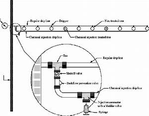 Schematic Diagram Of A Regular Drip Irrigation Line And A Chemical
