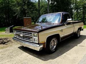 1986 Chevrolet Silverado C10 Pickup Truck  Solid Truck  Short Bed  For Sale  Photos  Technical