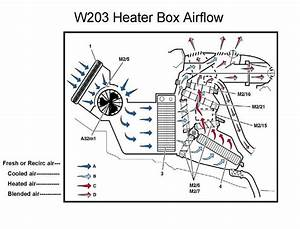 Clean A  C Evaporator To Rid Mold  Midlew  Where  How To Access A  C Evaporator Drain