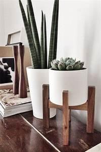 Porte Plante Interieur Design : voici les plus belles plantes d int rieur pour donner de la vie votre environnement joli ~ Teatrodelosmanantiales.com Idées de Décoration
