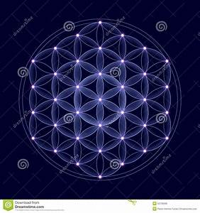 Cosmic Flower Of Life With Stars Stock Illustration ...