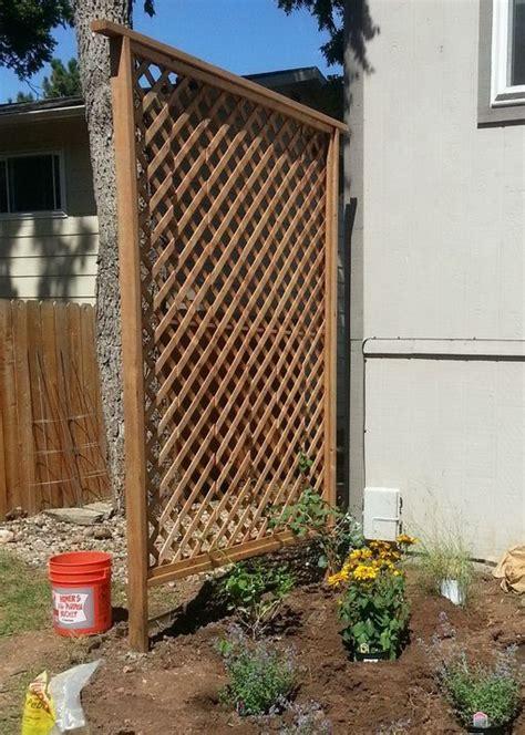 Outside Trellis by 50 Garden Trellis Backyard Privacy Shield Diy Diy
