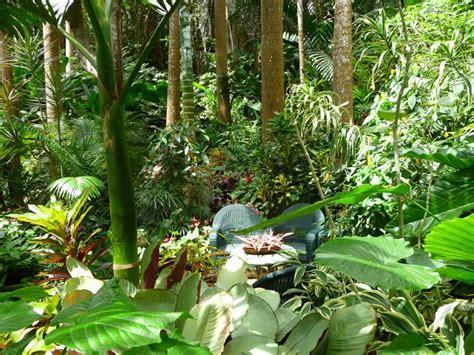 tropical landscape  flower garden locations