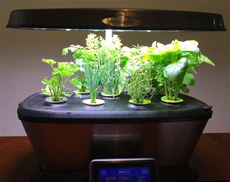 aero herb garden review aerogarden bounty from miracle gro ask dave 1168