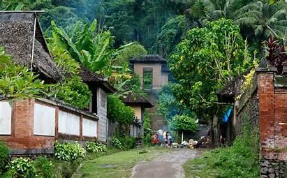 Bali Village Traditional Desa Travel Villages Lovina