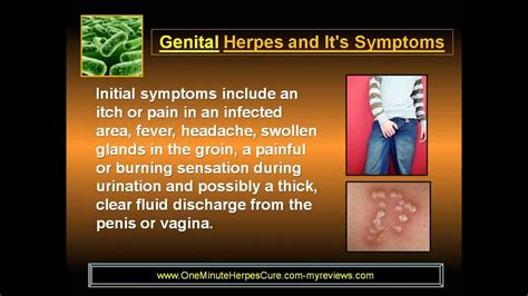 herpes stages early