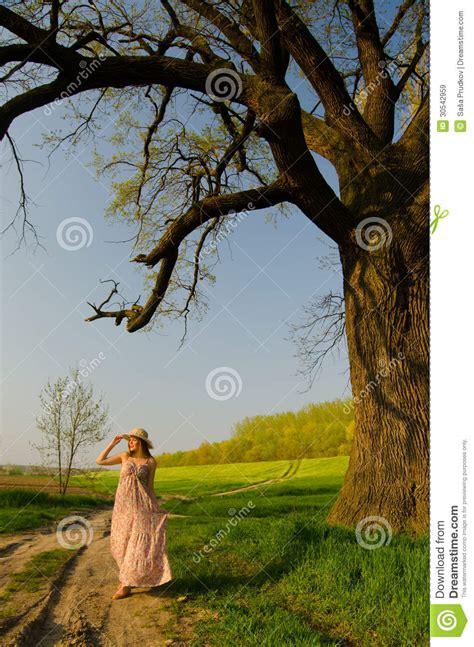 long walk  countryside stock image image  beauty